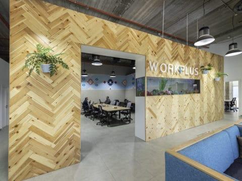 וורקפלוס Workplus 9