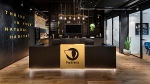 פנתרה – חלל עבודה עם עוצמה נשית מתפרצת