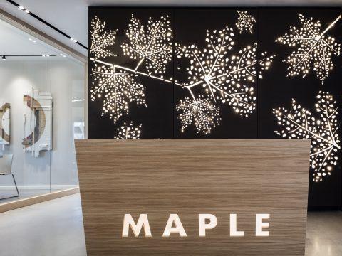 מייפל - Maple - חלל עבודה בתל אביב