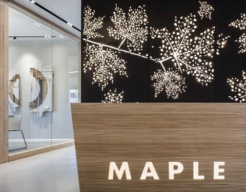 חלל עבודה מייפל – Maple